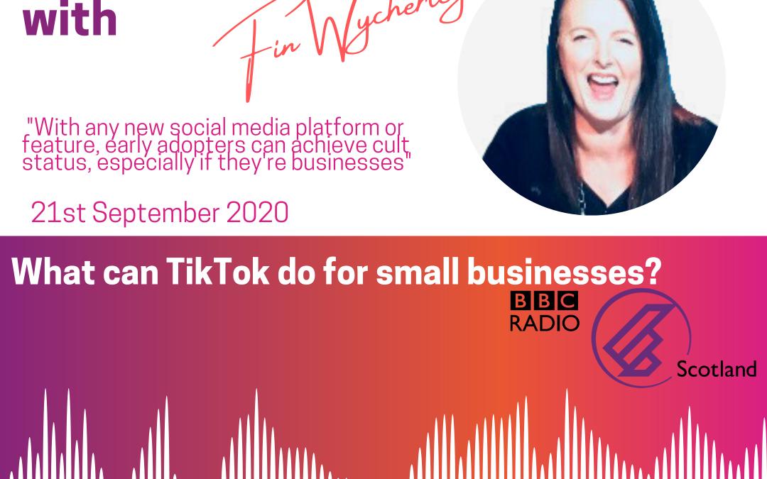TikTok for Small Business